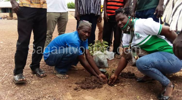 Earth Day: NACPaCC to plant 1,000 trees in a bid to tackle climate change